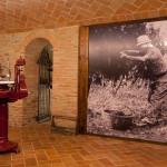 Agriturismo La Rondanina